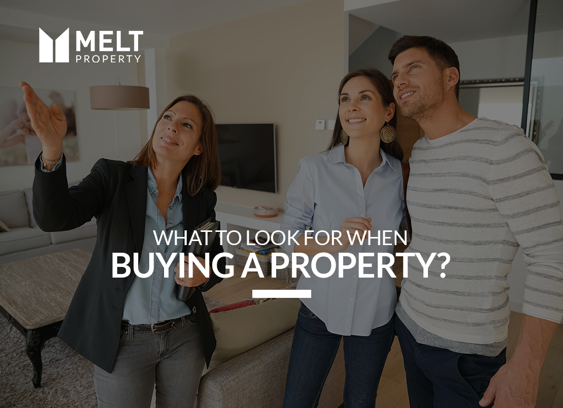 What to Look for when Buying a Property?